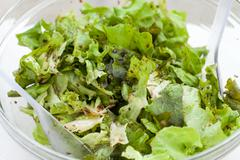 the green lettuce with herbs and the sauce vinaigrette - stock photo