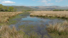 Welsh landscape on a sunny day Stock Footage