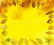 Border of autumn leaves - stock photo