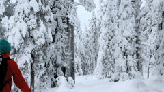 Riisitunturi NP in winter male walker tykky frozen snow Lapland Finland - stock footage