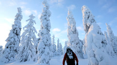 Male walker carrying snow shoes Riisitunturi NP tykky, Lapland Finland Stock Footage