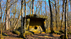 view of the temple-dolmen - stock footage