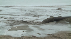 Beach Replenishment, May 2014 Stock Footage