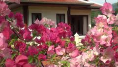 Thai bungalow Stock Footage