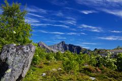 Mountainous panorama Stock Photos