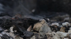 Stock Video Footage of Cold Smoldering Smoking Ashes 2