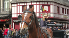 Horse and carriage brussels, belgium Stock Footage