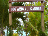 "Stock Video Footage of ""Botanical Garden"" sign. Palm trees waving."