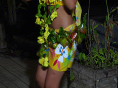 Tongan hula girl, people or person in shot, HD, UP15574 - stock footage