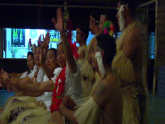 Tongans traditional dancing, people or person in shot, HD, UP15575 - stock footage