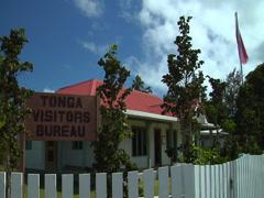 Tonga Visitors Bureau Haapai, HD, UP15685 Stock Footage