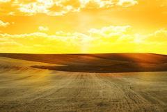 Maatalousmaa Kuvituskuvat