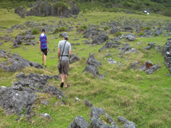 Tourists walking through rock garden, people or person in shot, HD, UP16101 - stock footage