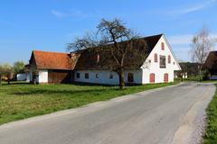 Farmhouses in western styria Stock Photos