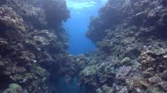Ocean scenery crevasse, in swimthrough, HD, UP16477 Stock Footage