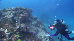 Nikonos V photographer feeding on deep coral reef with Semicircle angelfish in Stock Footage
