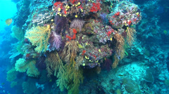 Ocean scenery on deep wall, HD, UP17304 Stock Footage
