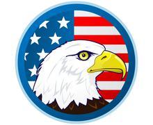 Bald eagle and american flag Stock Illustration