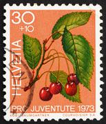 Postage stamp Switzerland 1973 Sweet Cherries, Prunus Avium, Bir Stock Photos
