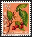 Stock Photo of Postage stamp Switzerland 1973 Sweet Cherries, Prunus Avium, Bir