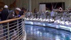 Visitors at California Academy of Sciences. View of the Coral Reef exhibit. - stock footage