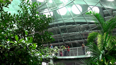 Visitors at California Academy of Sciences. Rainforest exhibit with butterflies. Stock Footage