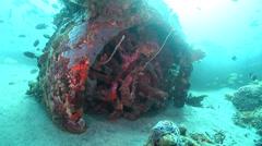 Ocean scenery B17, engine, on wreckage, HD, UP18426 - stock footage