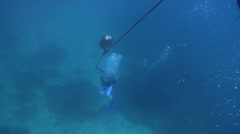 Group of scuba divers making a safety stop on mooring rope in Solomon Islands, Stock Footage