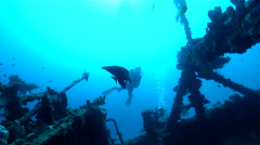 Buddy team of scuba divers swimming on wreckage with Blunthead batfish in Stock Footage