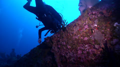 Lone diver looking around on wreckage in Solomon Islands, HD, UP18929 Stock Footage