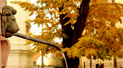 Public Fountain. Autumn background. Stock Footage