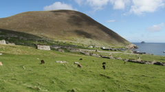 Abandoned Village Hirta St Kilda Scotland - stock footage