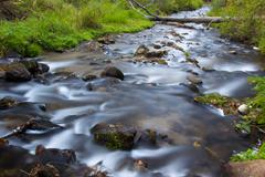 Flowing Water of Osceola Creek Stock Photos