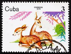 Postage stamp Cuba 1979 Deer, ZOO Animals - stock photo