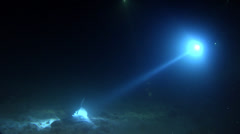 East Australian shovelnose ray on sand and coral rubble at night, Aptychotrema Stock Footage