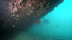 Buddy team of scuba divers swimming on wreckage in Australia, HD, UP20754 Stock Footage