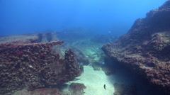 Ocean scenery strong surge, on shallow historic collapsed wreckage, HD, UP20825 Stock Footage
