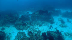 Anchor chain stuck under rock lifting it up, underwater, anchor damage, HD, Stock Footage