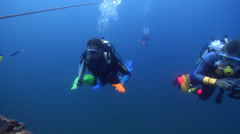 Scientific diver in Australia, HD, UP22632 Stock Footage