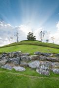 tree on hill with cloudy blue sky and sunbeam - stock photo