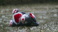 Romantic stuffed toy lost in the rain Stock Footage