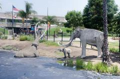 La Brea Tar Pits - stock photo