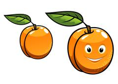 Cute happy golden orange apricot Stock Illustration