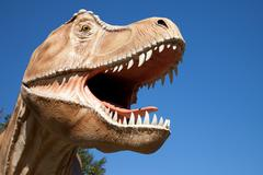 Aggressive T-Rex Stock Photos