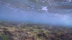 Ocean scenery wave comes from behind and rolls overhead, on reef flat, HD, Stock Footage