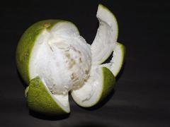 Pomelo - stock photo