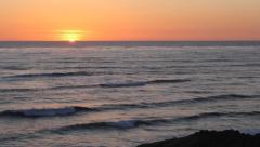 Sunset Ocean and Bird Stock Footage