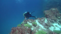 Point and shoot photographer taking images on rocky reef with Galapagos black Stock Footage