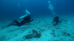 Group of scuba divers taking images on sand with Red lipped batfish in Galapagos Stock Footage