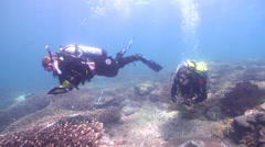 Scientific diver swimming on shallow coral reef in Australia, HD, UP26677 Stock Footage